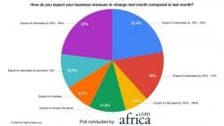 Poll Report Pie Chart - Revenue.jpg